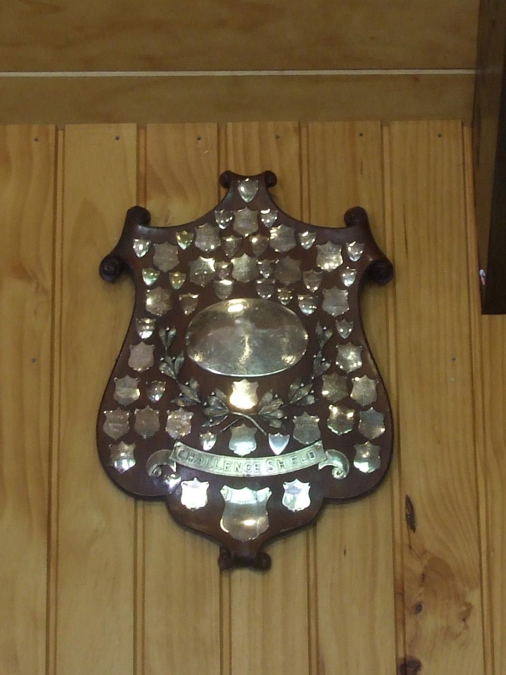 Anderson Shield